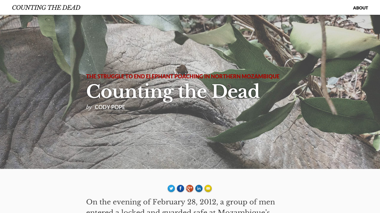 counting-the-dead
